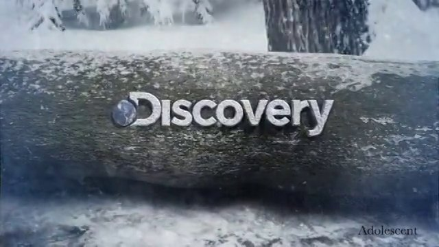 discovery channel esteroides