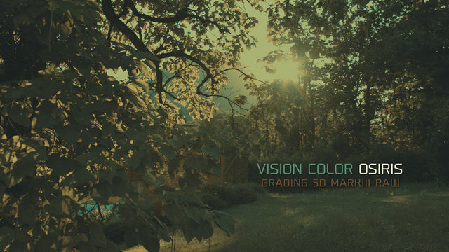 Vision Color : OSIRIS / Grading 5D Raw