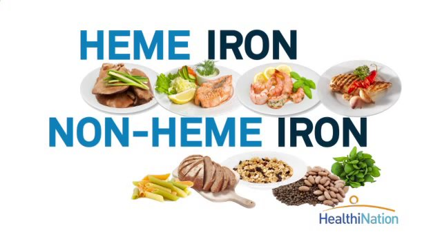 Iron Rich Foods List For Babies