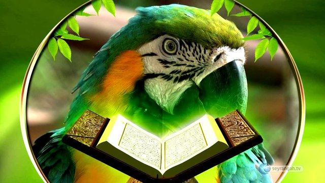Kur'an ile Felsefenin Hayata Bakışları