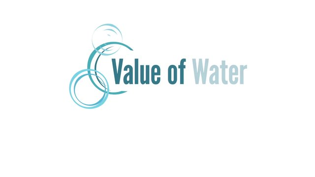 "Value of Water ""Beyond the Drain"""
