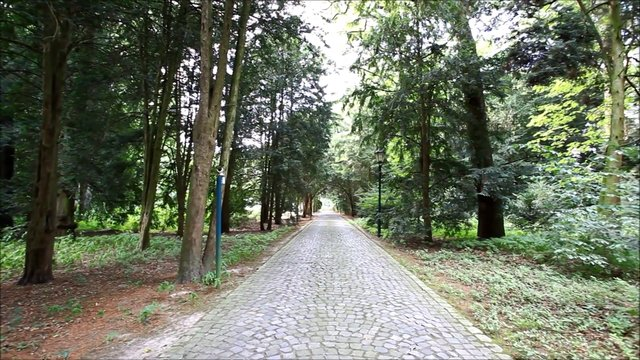 VON POLL IMMOBILIEN DÜSSELDORF - Herrschaftliche Villa im Düsseldorfer Stadtwald