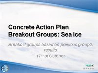 WCRP 17/10-7 Concrete Action Plan Breakout Groups: Sea Ice