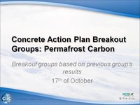 WCRP 17/10-6 Concrete Action Plan Breakout Groups: Permafrost Carbon