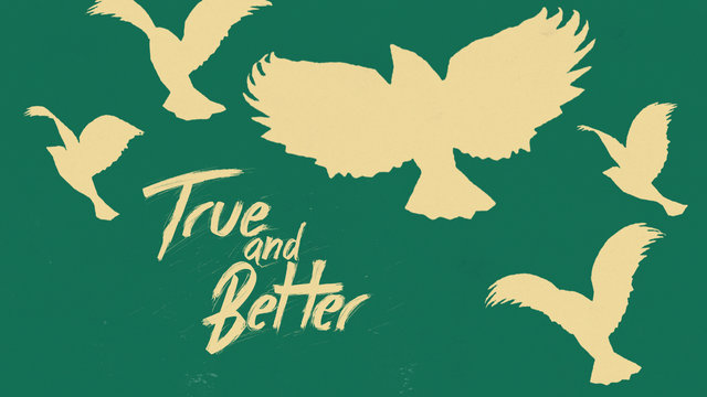 True and Better | Dan Stevers