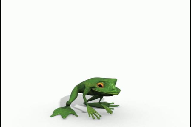 Jumping frog animation - photo#4