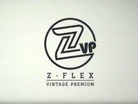 ZVP - Episode 1 - The Beginning