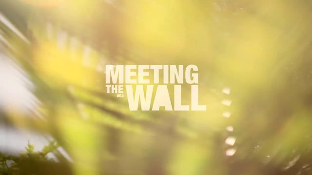 Meeting The Wall #03