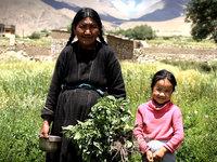 Climate Change: Ladakh