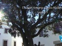Antonio García - El Pozo Viejo