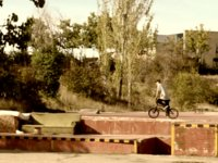 Jaime Gonzalez - La cantera