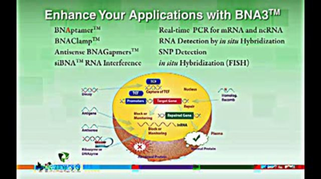 Bridged Nucleic Acids - BNA Synthesis - Biosynthesis