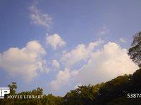 青空と雲 微速度撮影 木々の上を流れてゆく白い雲