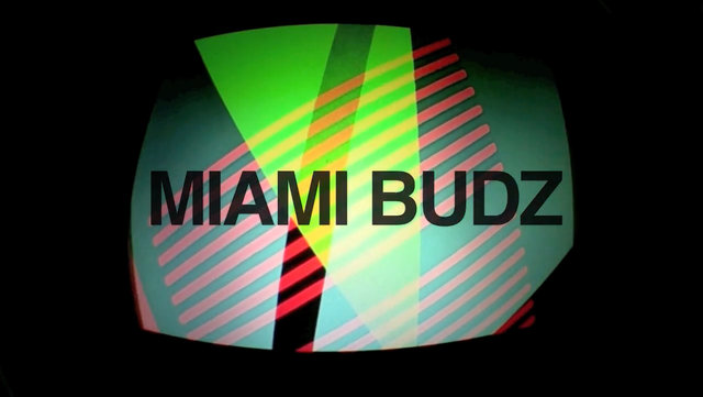 4.5 Miami Budz Edit by Ian Copp