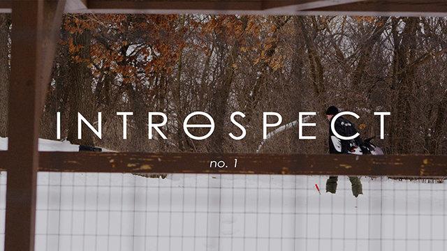 Introspect - Zac Marben