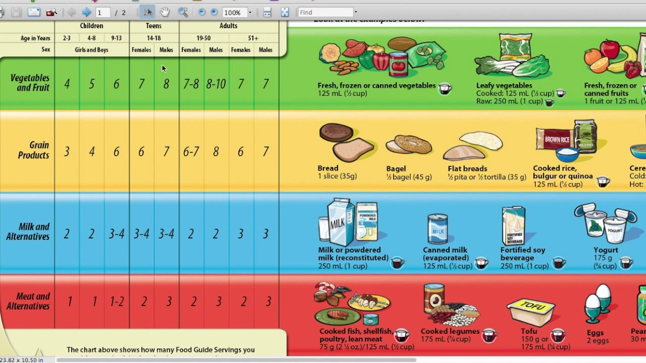Canada S Food Guide For Kids Printable