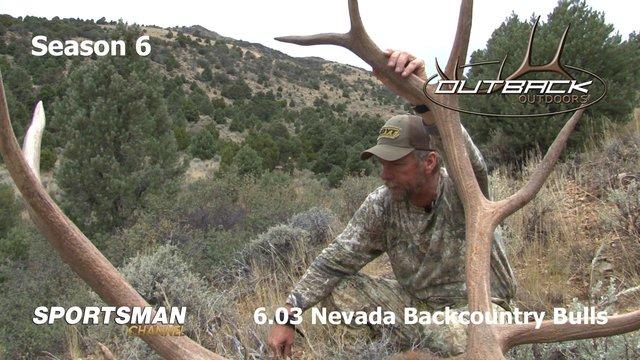 6.03 Nevada Backcountry Bulls