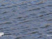 風で川面に波紋が出る