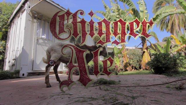 Chigger Ale - Tráiler