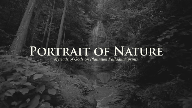 Portrait of Nature -Myriads of Gods on Platinum Palladium Prints-(Trailer / Chinese subtitle)