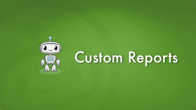 How To Use Custom Reports