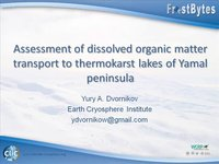 Frostbyte Y Dvornikov: Assessment of dissolved organic matter transport to thermokarst lakes of Yamal peninsula