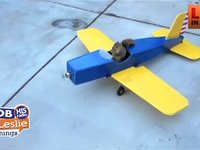 Can a Squirrel Fly a Plane?