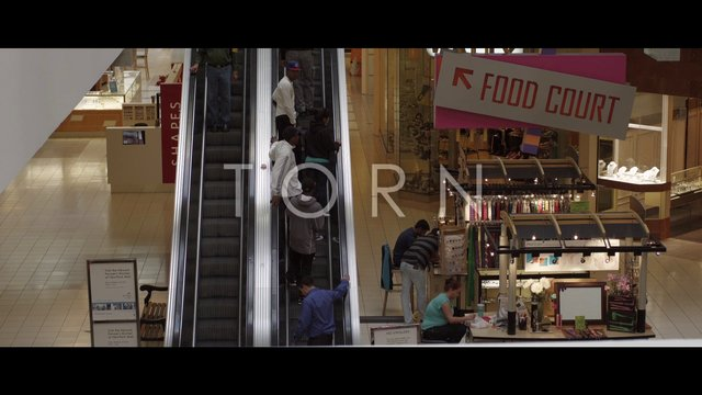 """Torn"" Trailer"