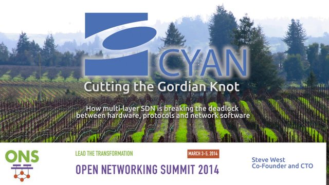 Cutting the Gordian Knot with Multi-Layer SDN