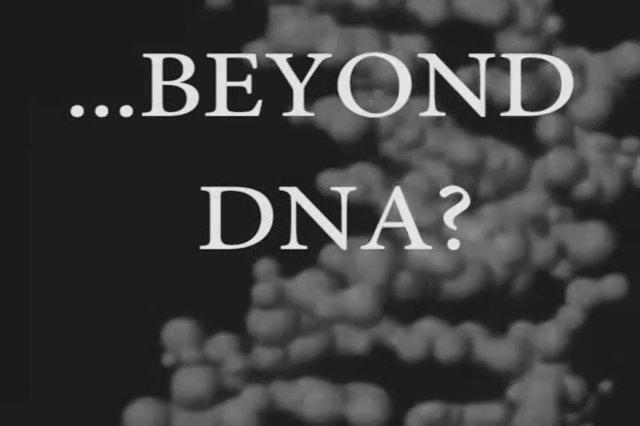 More stuffIntrodução para a exposição -Além do DNA, - Introductory video for the exhibition Beyond DNA Deep.