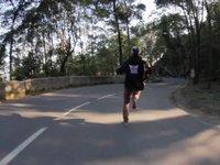 Mystic Forest Run Run & Run