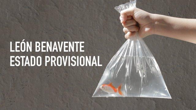 Leon Benavente – Estado Provisional