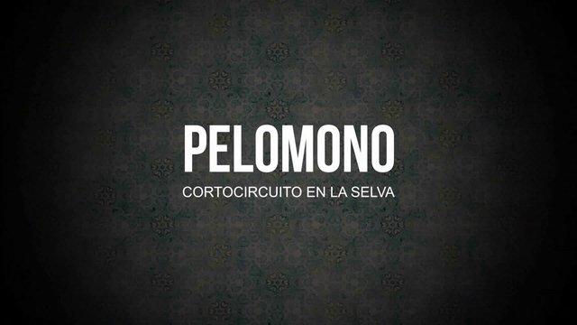 PELOMONO – Cortocircuito en la selva