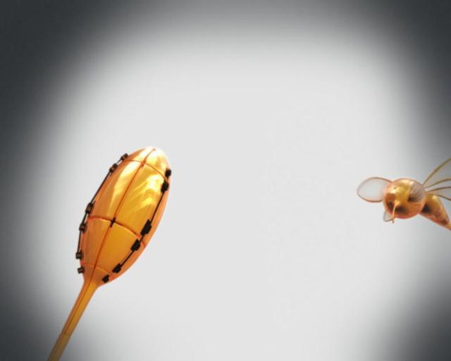 MBC4 Bee