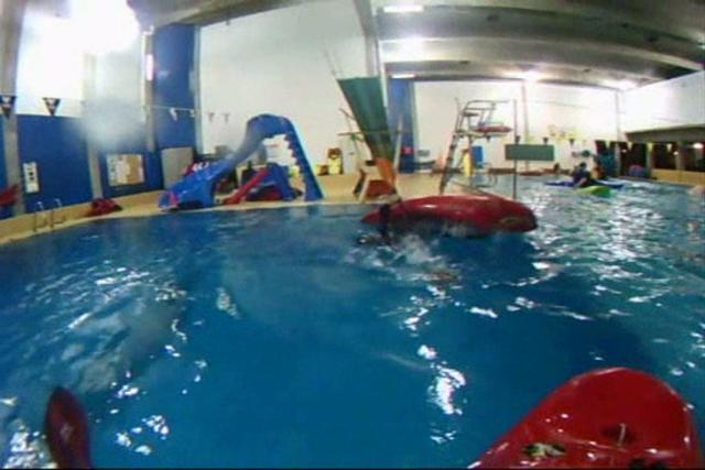 pratique piscine coll ge rosemont on vimeo