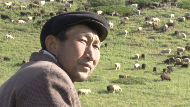 Finding a place to feed: Kyrgyz shepherds and climate change