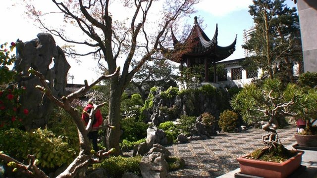 The Dr. Sun Yat-Sen Classical Chinese Garden - Vancouver, Canada.