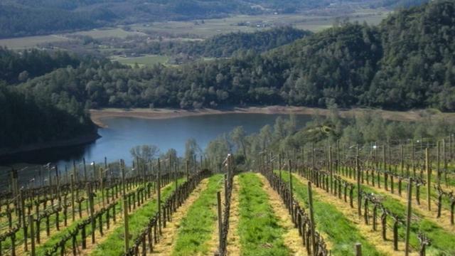 Wine Country - Napa & Sonoma
