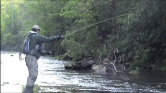 Fly fishing for south carolina trout on vimeo for South carolina fishing
