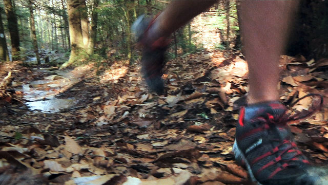 Rock/Creek River Gorge Trail Race
