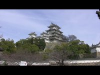 Himeji Castle and Cherry Blossoms