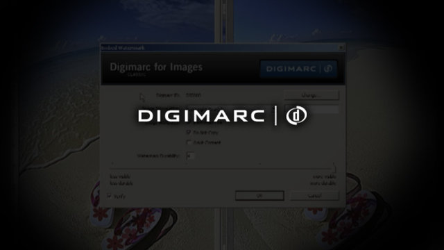 """Beat the Villain"" with Digimarc for Images Digital Watermarking"