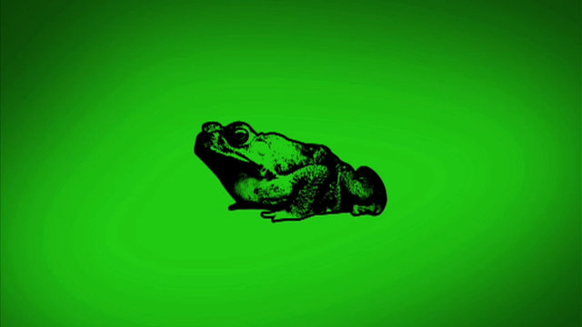 TheBeastFile-CaneToads