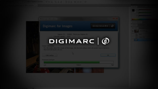 Web Lookup Options for Communicating Your Information - Digimarc for Images