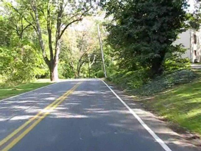 Riding Through Velvet Green