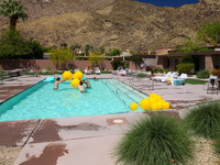 Palm Springs: The Hideaway Time-Lapse