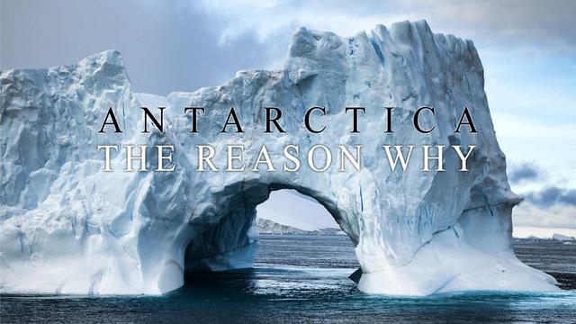 Antarctica - The Reason Why