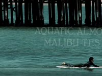 Aquatic Almond - Malibu Test
