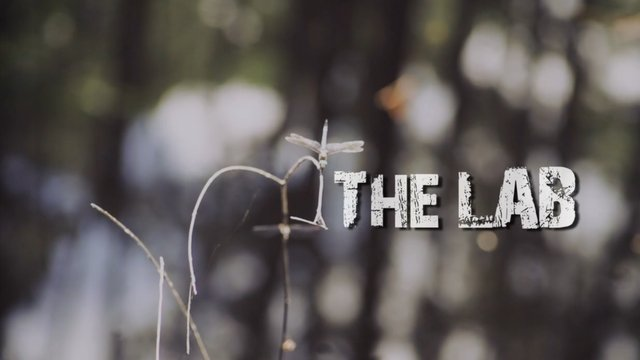 """The Lab"" - Teaser"