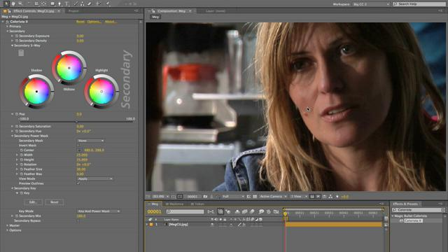 05 - Cosmetics: Skin Retouching with Magic Bullet Colorista II